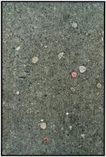 "Zoe Leonard in ""Still Life: Obstinacy of Things"" at Kunst Haus Wien"