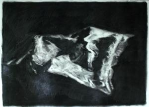 Ramón Serrano timelapse at Art Toronto 2015