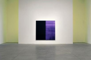 Callum Innes: In Position