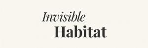 Invisible Habitat Interviews Anita Rogers