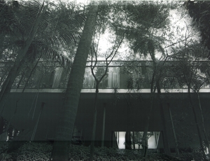 Veronika Kellndorfer's Tree House (Casa de Vidro) Acquired by SFMOMA