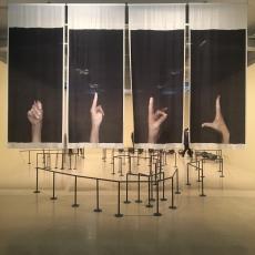 Dane Mitchell at City Gallery Wellington