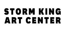 Virginia Overton at Storm King Art Center