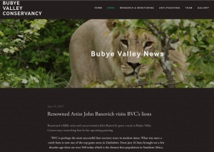 Bubye Valley News-Renowned Artist John Banovich visits BVC's lions