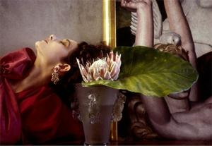 The Cut: Award-Winning Photographer Sheila Metzner Authors From Life