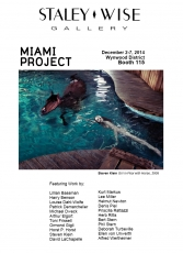 STALEY-WISE GALLERY AT MIAMI PROJECT 2014