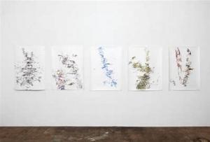 Artist's Eye (artist's talk): A conversation with Anne Allen
