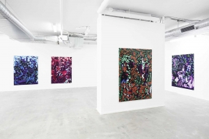 """Mousse Magazine: Ry David Bradley """"Overworld"""" at COMA Gallery, Rushcutters Bay"""