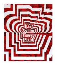 ARTIST TALK: LIZ COLLINS' ENERGY FIELD