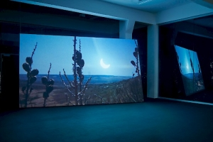 An installation view of NEGATIVE SPACE in Dusseldorf with a large video being screened