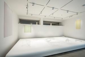 An installation image of Kovachevich's work at CIRVA