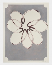 A line painting of a flower on a gray background
