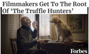 Filmmakers Get To The Root Of 'The Truffle Hunters'