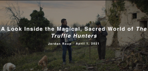 A Look Inside the Magical, Sacred World of The Truffle Hunters