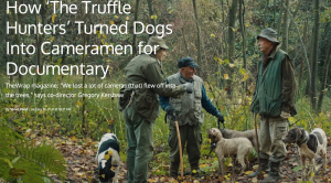 How 'The Truffle Hunters' Turned Dogs Into Cameramen