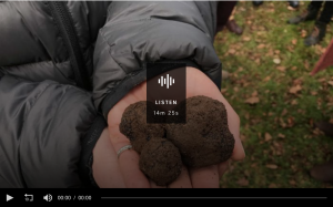 The dogs eat first and the trees have names: Italy's career truffle hunters