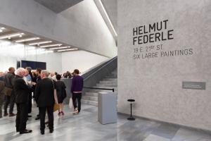 Helmut Federle at Kunstmuseum Basel, Switzerland