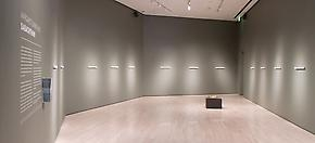 Margaret Evangeline: Sabachthani Museum Show at the Eli and Edythe Broad Art Museum
