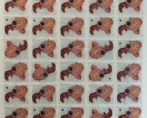 An image of many fibroids, repeated and rotate in a grid of 5 x 10