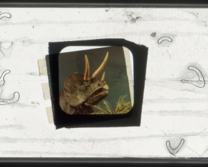 A framed artwork with a dinosaur in the center floating in white space with varied wishbone-shaped abstractions