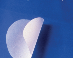 A photograph of the cover of a book produced on the occasion of Frieze art fair for Thomas Kovachevich