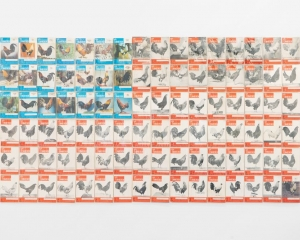 96 copies of cockfighting magazine, laid out like an American flag based on the red, blue, and white colors of their covers.