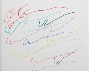 Multicolored squiggly lines on a white canvas