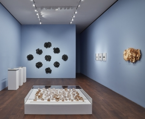 Installation view of Eva Hesse Hannah Wilke Erotic Abstraction