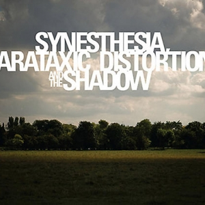 Damian Loeb Synesthesia, Parataxic Distortion, and the Shadow Cover