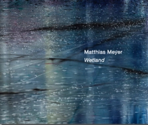 Matthias Meyer - Danese/Corey exhibition catalogue