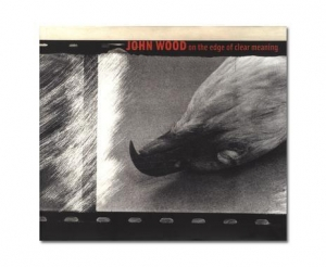 John Wood: On the Edge of Meaning