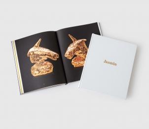 Jasmin Anoschkin: Golden Menstruation