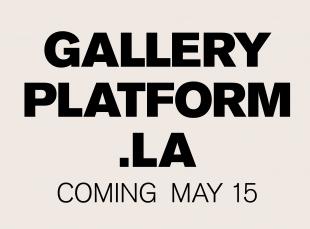 gallery platform la