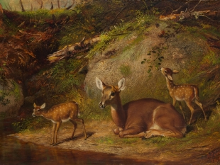 Doe and Two Fawns, 1882