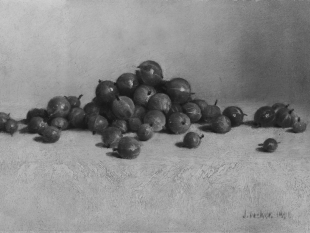 Gooseberries, 1896