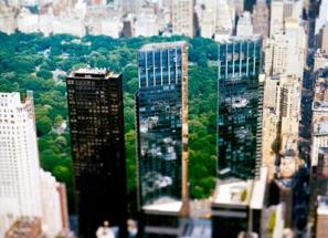 Site Specific New York (2007)