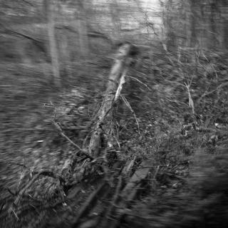 ANDREW WRIGHT | TABLEAUX PHOTOGRAPHIQUES NON-TITRÉS | MONTRÉAL