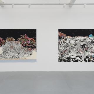 "Francesca Gabbiani ""Vague Terrains/Urban Fuckups"""