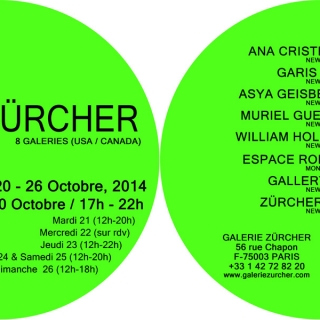 Salon Zurcher- Fiac Paris, France