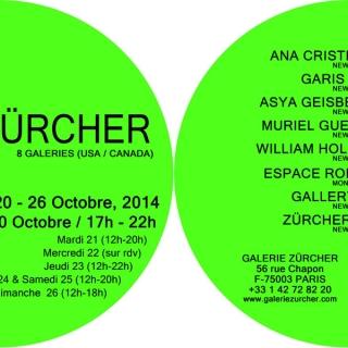 Salon Zurcher- Fiac Paris, France