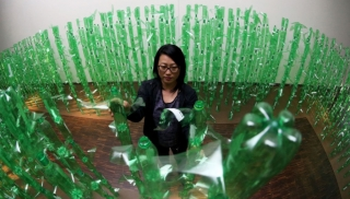 Step inside a corn maze — made of green soda bottles — at the Figge Art Museum