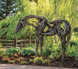 Deborah Butterfield at the Denver Botanic Gardens