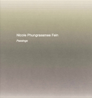 Nicole Phungrasamee Fein - Danese/Corey exhibition catalogue