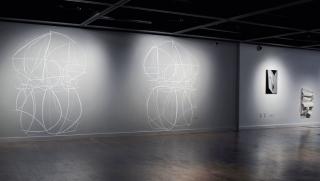 CARIN RILEY FRAUK SCHLITZ in POLITICIZING SPACE curated by Charlotta Kotik