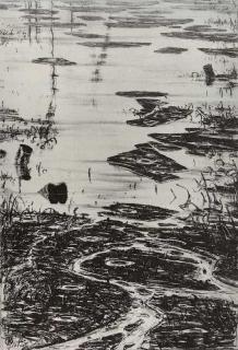 Jürg Kreienbühl Pétrolnymphéas 1981 lithograph lithographie