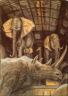 Jürg Kreienbühl Rhinocéros et éléphants 1984 Muséum d'histoire naturelle lithograph lithographie
