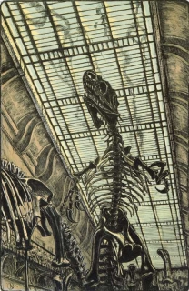 Jürg Kreienbühl Agression 1984 Muséum d'histoire naturelle lithograph lithographie