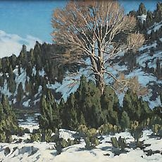 Winter in New Mexico | Recent Acquisitions
