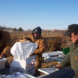 Seeding and Transplanting