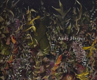 Andy Harper - Danese catalogue 2009